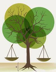 Dret Ambiental
